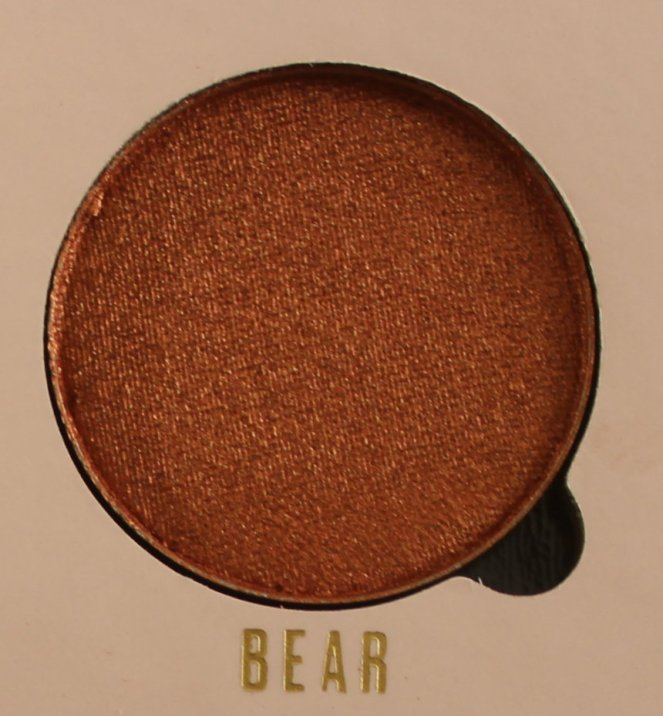 Belle Jorden x Obsession Eyeshadows Bear